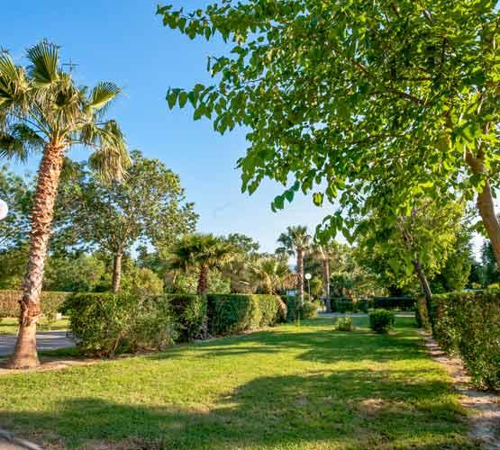 Location mobile-home camping 4 étoiles Argelès
