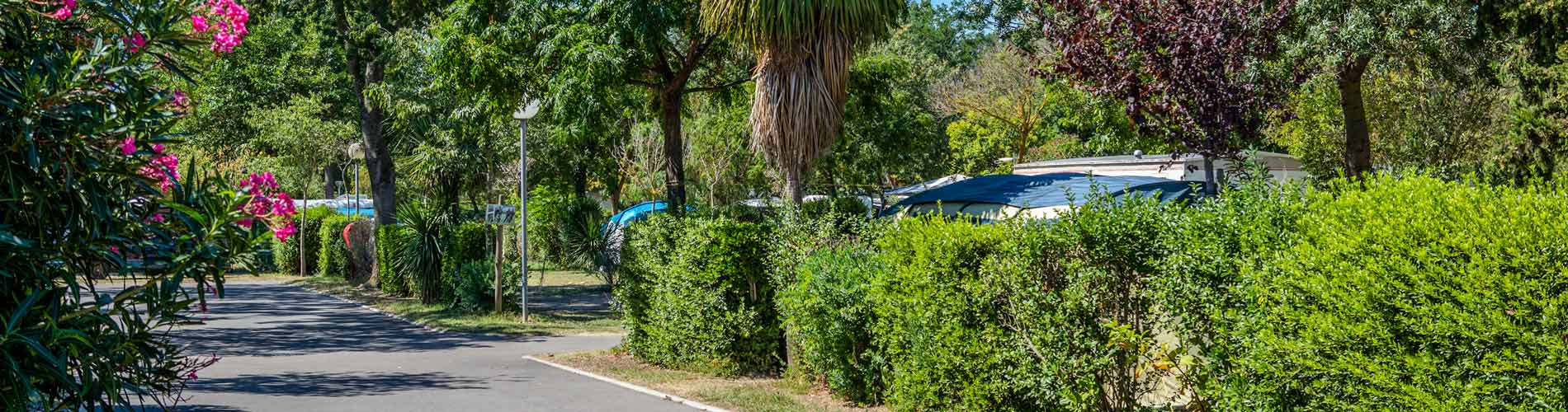 location mobil home argeles sur mer camping